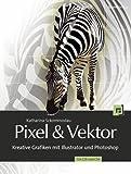 Pixel & Vektor: Kreative Grafiken mit Illustrator und Photoshop - Für CS5 und CS4 - Katharina Sckommodau