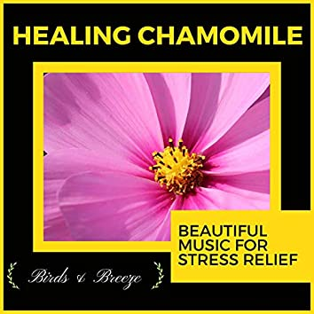 Healing Chamomile - Beautiful Music For Stress Relief