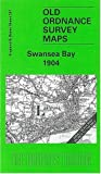 Swansea Bay 1904: One Inch Map 247 (Old Ordnance Survey Maps of England & Wales) by Louise Miskell (2004-02-20)