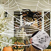 Norsens 12Ft Spider Web + 30