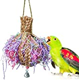 Acidea Bird Toys Foraging Star Bird Chew Toy Super Shredder Ball - Will Keep Your Bird Busy for Weeks Foraging for Hidden Treasures Parrot Cage Toys Cages Shredder Cockatiel Conure