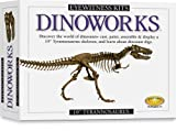 Eyewitness Kits Dinoworks Trex
