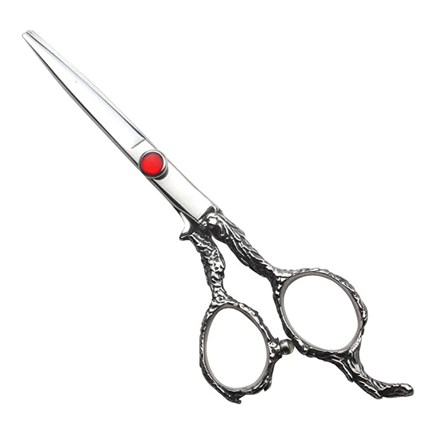 そこからごめんなさい殺人6インチ理髪はさみセット、家族の散髪用具セット モデリングツール (色 : Silver)