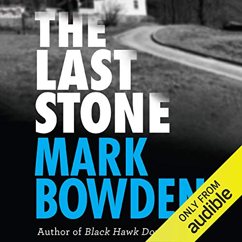 The Last Stone audiobook cover art
