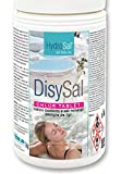 hydrosal DisySal Chlor Tablet 1KG Calcio Ipoclorito + Sali Minerali in Pastiglie...