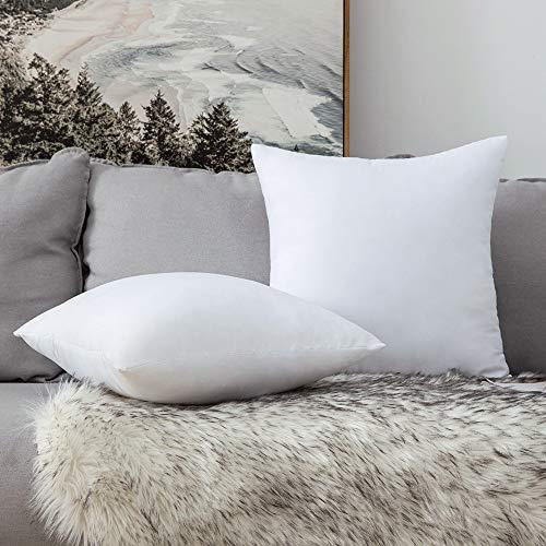 MIULEE Relleno Cojin 30X30 CM Blanco 2 Piezas Almohada Suave y Mullido Cojines Decorativo para Sofa Indeformable Decoracion de Dormitorio Cama Oficina Salon Habitacion 2 Piezas Blanco