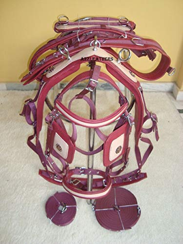 Horse Cart Synthetic Patent Nylon Driving Harness with Designer Bridle | Size- Cob