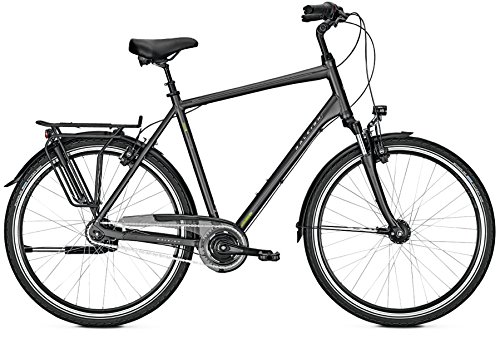 RALEIGH Unico XXL City Bike 2018 (64, Darkgrey matt)