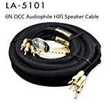 T-king Choseal 6N OCC Audiophile HiFi Speaker Cable 24K Gold-Plated Banana Plug Top Level Speaker Cable 25MMx2.5M LA-5101