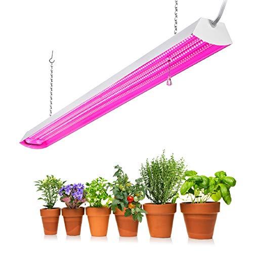 48W HYDRO-22 T5 Propagation Light energy saving hydroponics tent combo with fan
