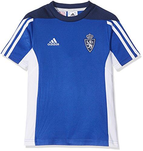 adidas Mt 14 Tee Y Camiseta Real Zaragoza Fc, Niños, Azul (Azufue), 152