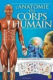 L'anatomie du corps humain: 24 grandes planches illustrées