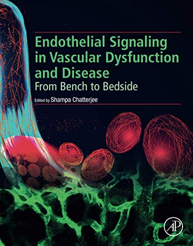 Endothelial Signaling in Vascular Dysfunction and Disease: From Bench to Bedside