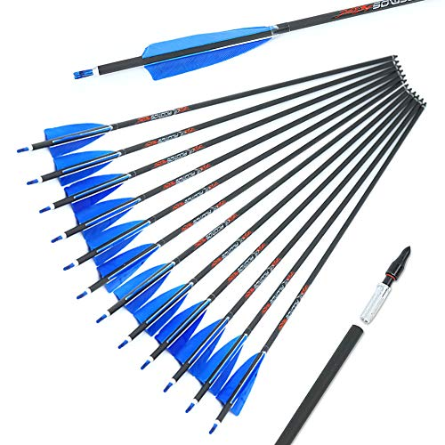 31-Inch Carbon Arrow 6.2mm Practice Hunting Arrows 500-Spine Archery Arrows for 20/25/30/35/40/45/50/55/60/65 Lbs Traditional Recurve Compound Bow Longbow Targeting Shooting