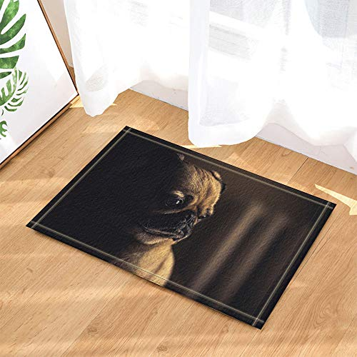 HYTCV Black Background, Brown Pug, Black Eyes and Nose Bathroom mat outdoor indoor non-slip mat
