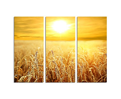 Paul Sinus Art 130x90cm – Keilrahmenbild Ähren Weizenfeld Sonnenuntergang Feld 3teiliges Wandbild auf Leinwand und Keilrahmen - Fotobild Kunstdruck Artprint