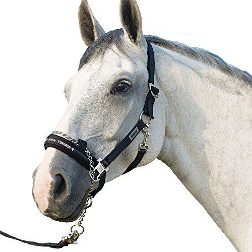 ESKADRON CONTROL Halfter inkl. Führkette -schwarz-, schwarz, Pony groß