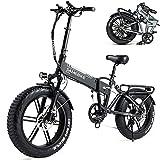 HPDOM Bicicleta Eléctrica Plegable para Adultos,Ebike Bicicleta de Montaña de 20 Pulgadas, 500W 48V 10AH, Shimano de 7 Velocidades, con Medidor LCD TFT a Color,Black