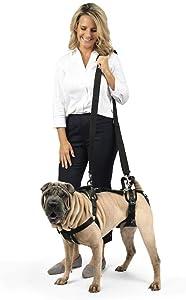 PetSafe CareLift Support Harness