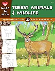 Learn to Draw Forest Animals and Wildlife