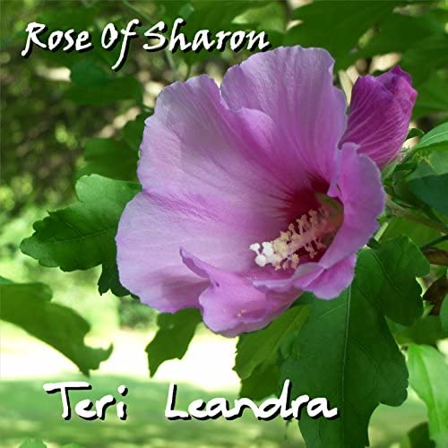 Teri Leandra feat. Leander
