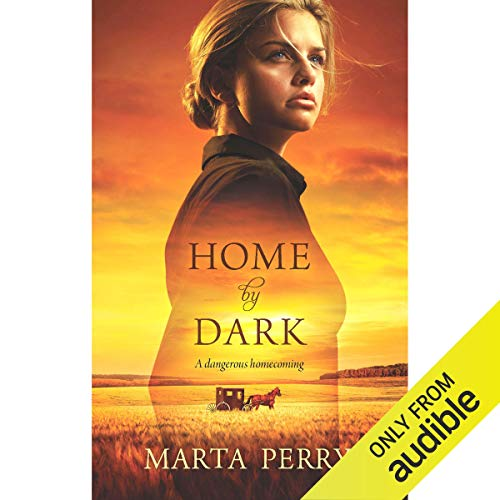 Home by Dark audiobook cover art