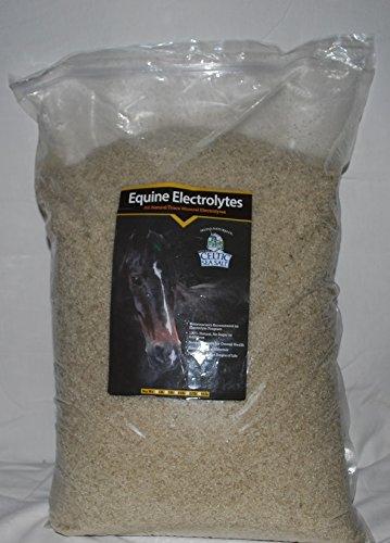 Celtics Sea Salt Equine Electrolytes (22 lb)