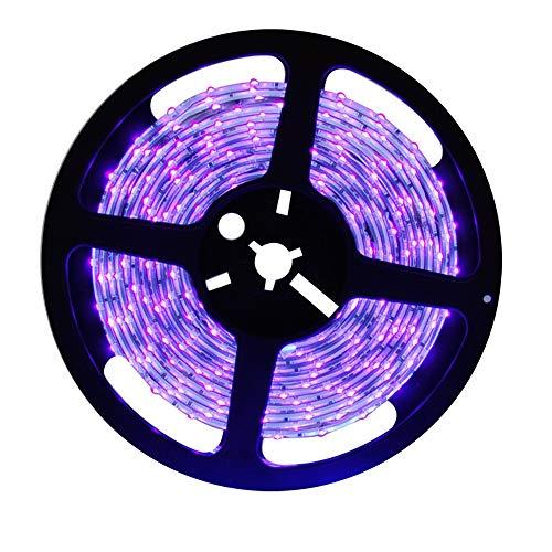 MARSWALLED 5M DC12V 440nm-450nm agua salada acuario arrecife 440nm azul actínico LED tira luces para acuario peces cultivo lámparas