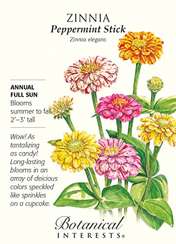 Bâton de menthe poivrée Mélange Zinnia graines - 750 mg