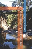 EL CAMINO DE LAS CUATRO SENDAS (Spanish Edition)