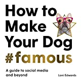 How To Make Your Dog #Famous: A Guide to Social Media and Beyond