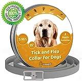 Collar ajustable para pulgas y garrapatas para perros pequeños, medianos y grandes   Impermeable   Tratamiento de pulgas   Protección hasta 8 meses   100% Natural BIO Organico