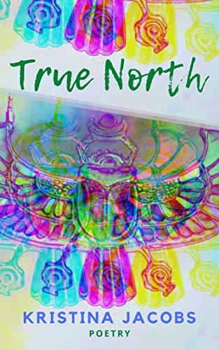 True North (English Edition)