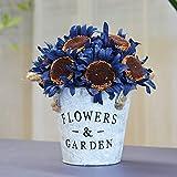 BonSai Ornamente American Iron Blumenarrangement gefälschte Blumendekoration Blumensimulation...