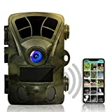 Rexing Woodlens H2 - 4K Wi-Fi Trail Camera, 20MP CMOS Motion Sensor with Ultra Night Vision Distance, 512GB, AV Output 12 Month Standby Surveillance Cam for Hunting Games and Wildlife Monitoring
