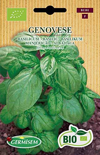 Germisem Biologico Genovese Semi di Basilico 2 g