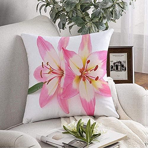 Funda de almohada acogedora con dos lirios rosados, aislados en la belleza, blanco, naturaleza, flores, colores de flores, objetos grupales, funda de cojín para sofá, decoración del hogar, 43