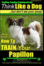 Papillon, Papillon Training AAA AKC: Think Like a Dog, but Don't Eat Your Poop! | Papillon Breed Expert Training |: Here's EXACTLY How to Train Your Papillon