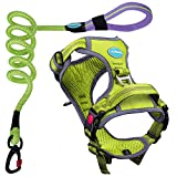 ThinkPet No Pull Harness Breathable Sport Harness with Handle - Reflective Padded Dog Safety Vest with Reflective Neon Dog Leash M Green/5FT Reflective Leash Set