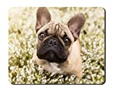 French Bulldog Animal Picture Game Office Mouse Pad (8.2x10.2inches)