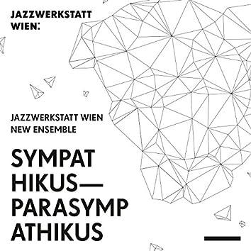 Sympathikus - Parasympathikus