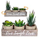 3 Artificial Succulent Plants with Pots with Rustic Planter Box  Home Sweet Home & Live Laugh Love | Realistic Greenery Mini Faux Plant Arrangements for Home Decor Office Table Bathroom Kitchen Dorm