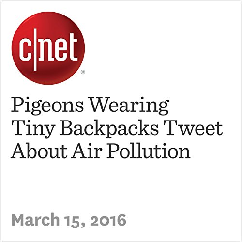 Pigeons Wearing Tiny Backpacks Tweet About Air Pollution audiobook cover art