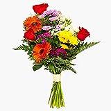 Ramos de flores naturales a domicilio variado Habana - Flores frescas - Envío a domicilio 24h GRATIS - Tarjeta dedicatoria incluída - Caja especial para ramos de flores naturales.