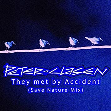 They Met by Accident (Save Nature Mix)