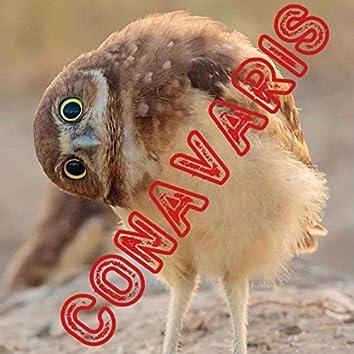 Conavaris