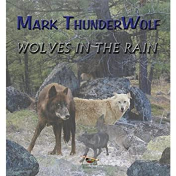 Wolves in the Rain