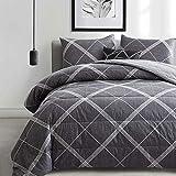 ATsense Comforter Set Queen, All Season 3-Piece 100% Cotton Fabric, Soft Microfiber Filled Bedding, Lightweight Reversible Duvet Insert (Grey&White, MY005)