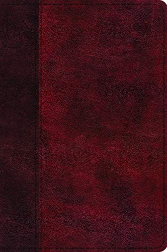 ESV Journaling New Testament, Inductive Edition (TruTone, Burgundy/Red, Timeless Design)