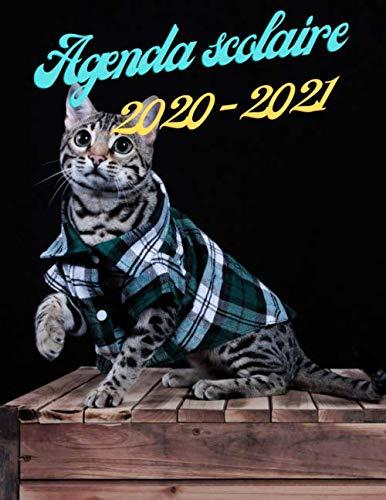 Agenda scolaire 2020 2021: Combinaison: Agenda Chat + Planner + Organiseur Mensuel, Semainier et Journalier   Gérer Votre Vie Scolaire, Perso, Votre Budget. Plus Pages de Coloriage Mandala Antistress